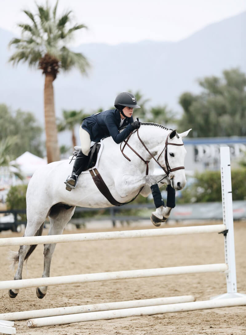 In the competition community, a horse's preference to start moving with either the left lead or the right is well-known. Equestrians, instructors, and trainers rely on this forelimb preference to help their equine athlete reach its full potential in the ring or on the jumping course. (www.ABSFreePics.com)
