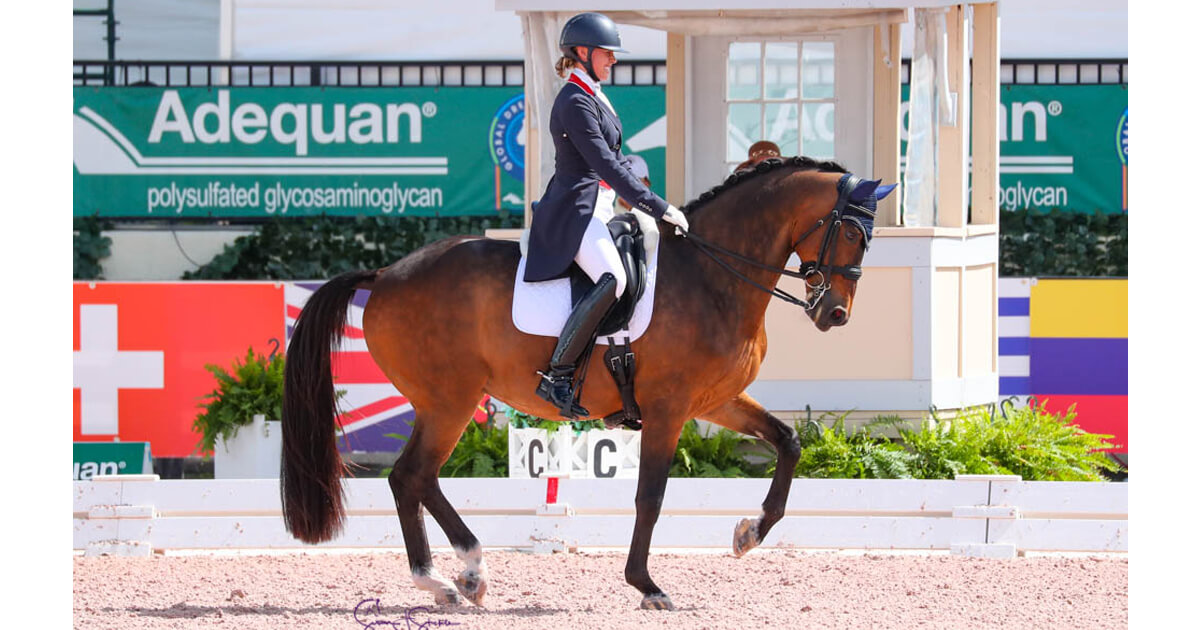 Thumbnail for Meet the Canadians for the Wellington Dressage Nations Cups