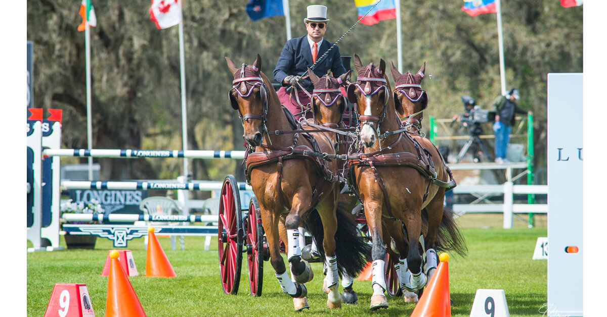Thumbnail for Record falls as Weber wins 17th USEF Combined Driving Championship