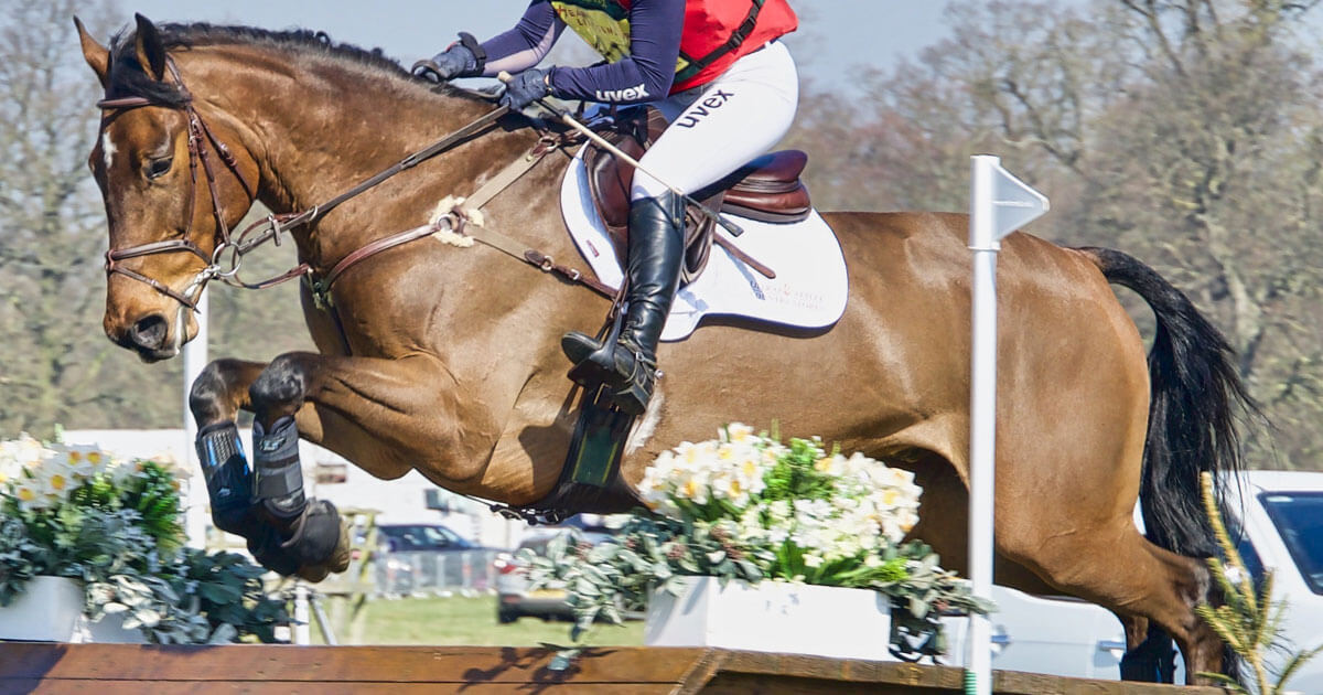 Thumbnail for Two Individuals Will Represent Canada in Eventing at Tokyo Olympics