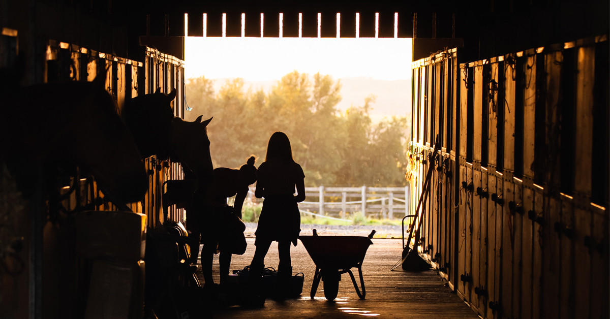 Thumbnail for Equestrian Canada provides list of resources for equestrian facilities