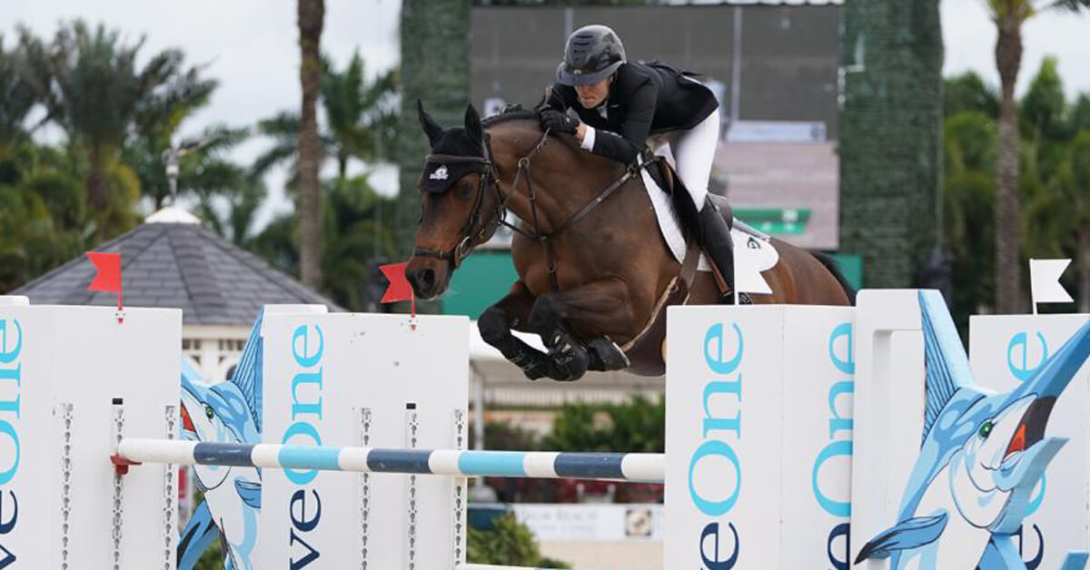 The Champion Equine Insurance Overall Jumper Style Winner at WEF was Brighton, owned by Artisan Farms and ridden by Tiffany Foster.