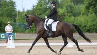 Theo and Jacquie competing at Caledon Dressage #3 last August. They were named year-end Third Level champions. (mwimages.com)
