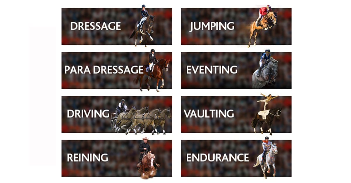 Thumbnail for New policy developed for FEI World Rankings during COVID-19 shutdown