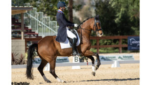 Nick Wagman and Zenith demonstrate the nuances a double bridle allows during a pirouette in a Grand Prix test at Pacific Coast Dressage in Californi. (Kim Miller photo)