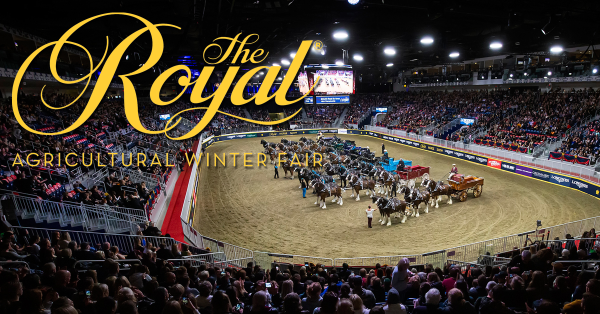 Thumbnail for Royal Winter Fair Official Statement Regarding COVID-19