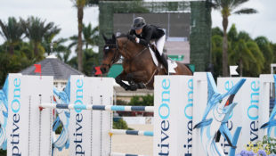 Brighton, ridden by Canada's Tiffany Foster, was one of the graduates of the 2013 World Championships for Young Horses that is now a top 1.60m show jumper. (Sportfot photo)