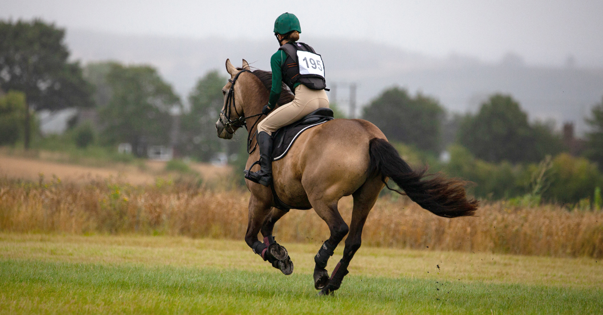 Thumbnail for EC's Return To Competition Guidelines For Sport Horses