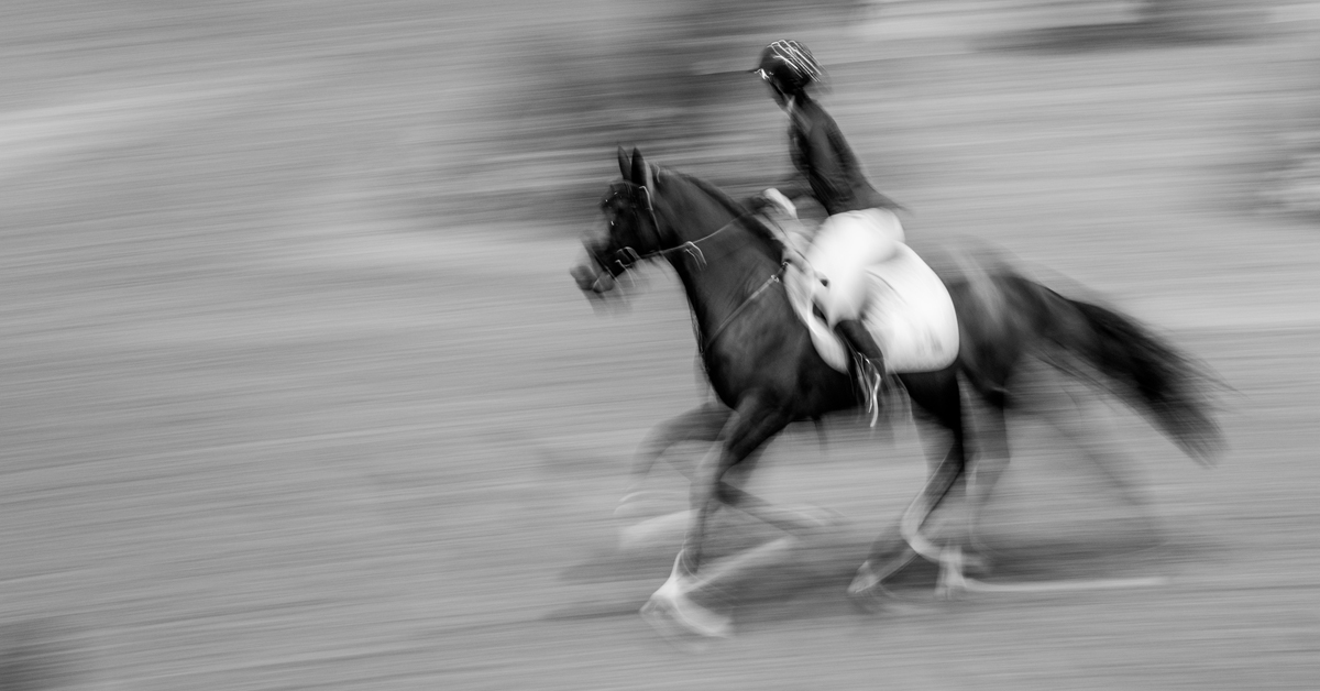 Thumbnail for FEI Tribunal Upholds Points Annulment in Olympic Rankings Classes