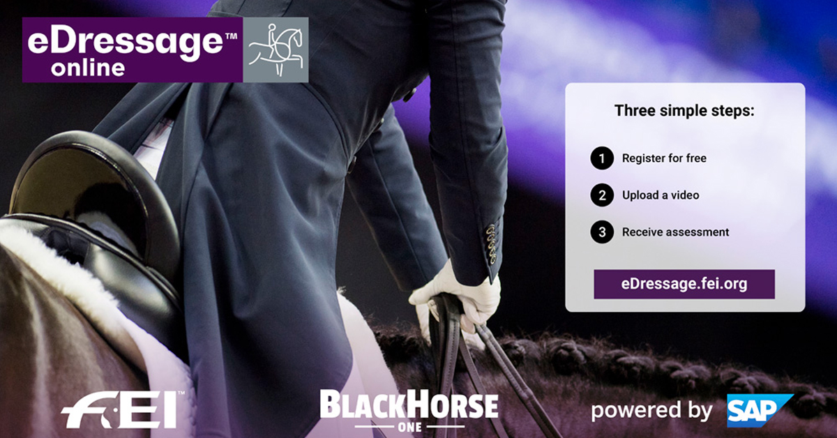Thumbnail for Online Training Platform Launched for Dressage and Para