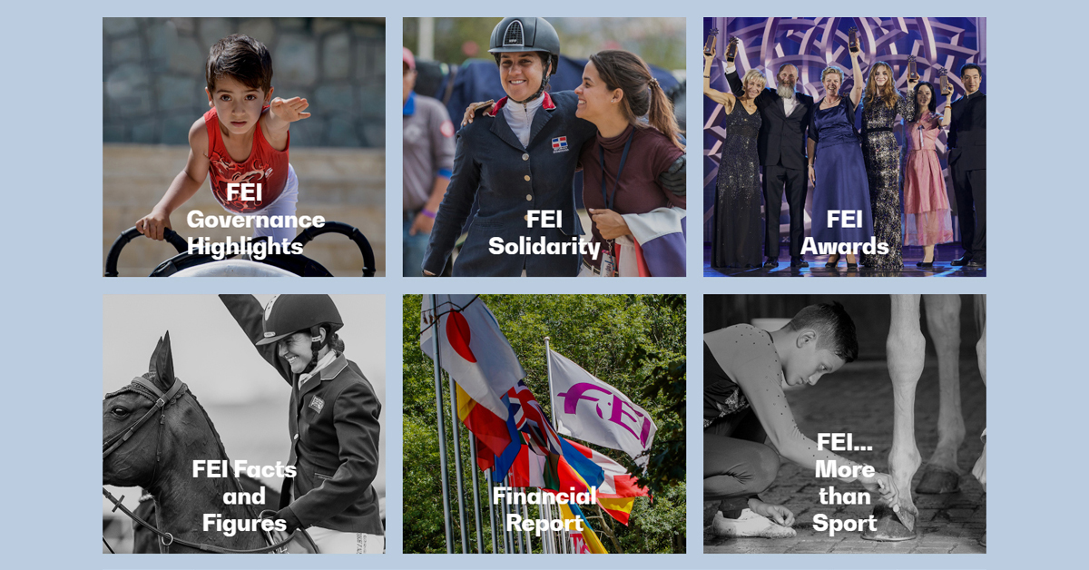 Thumbnail for Access the FEI Annual Report 2019 Online Now