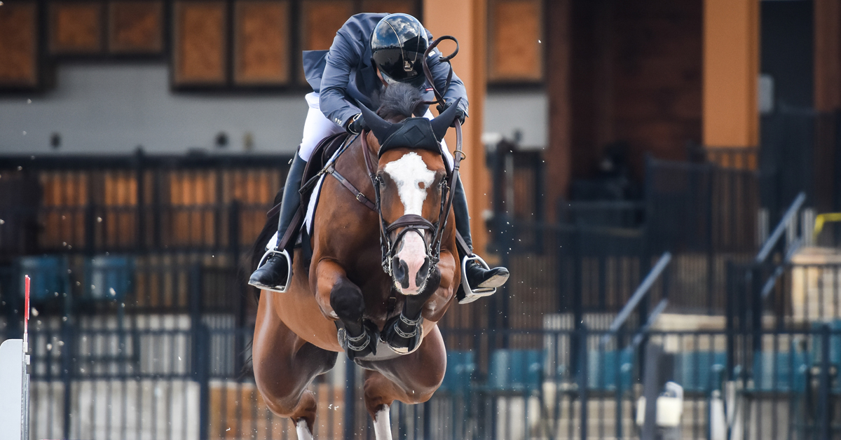 Thumbnail for Bedoya and Abracadabra Win $30,000 Sunday Jumper Classic at Tryon