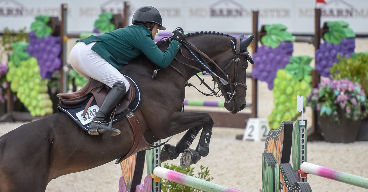 Thumbnail for Victoria Colvin and Gemino Take $30,000 Sunday Jumper Classic at Tryon