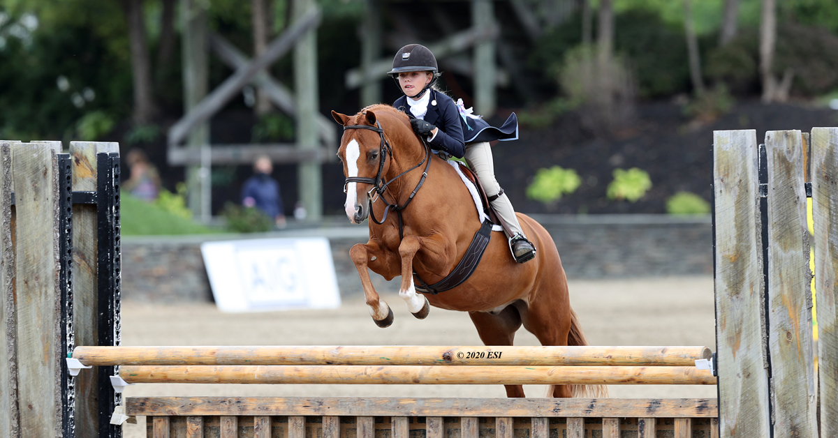 Thumbnail for Hunter and Jumper Champions Crowned as Saugerties Shows Wrap Up