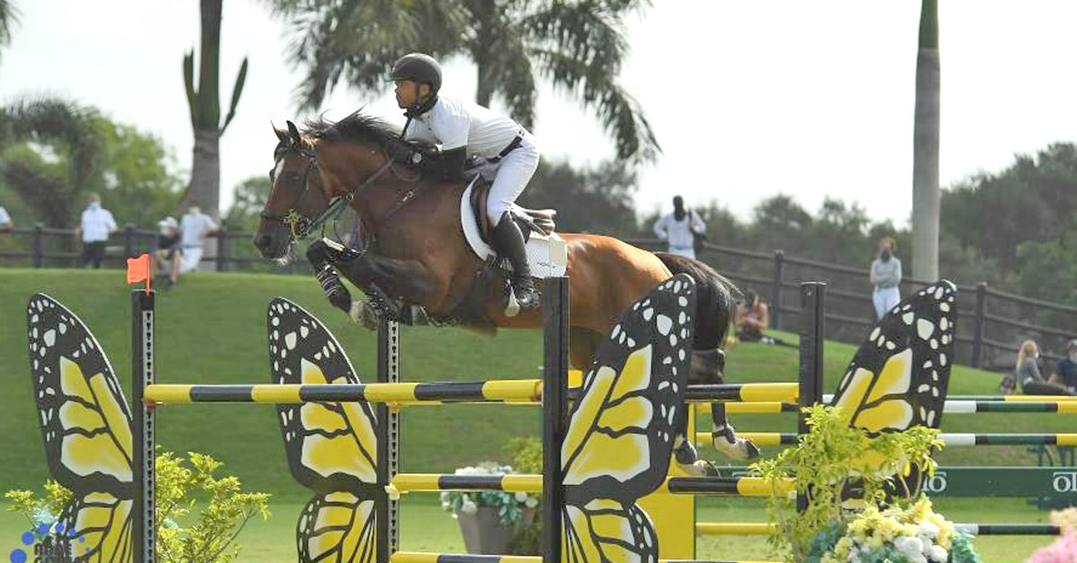 Thumbnail for Farrington and Jasper Continue Winning Ways in Open Stake at ESP