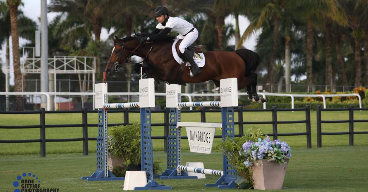 Thumbnail for Farrington Victorious Aboard Jasper In Grand Prix at Equestrian Village
