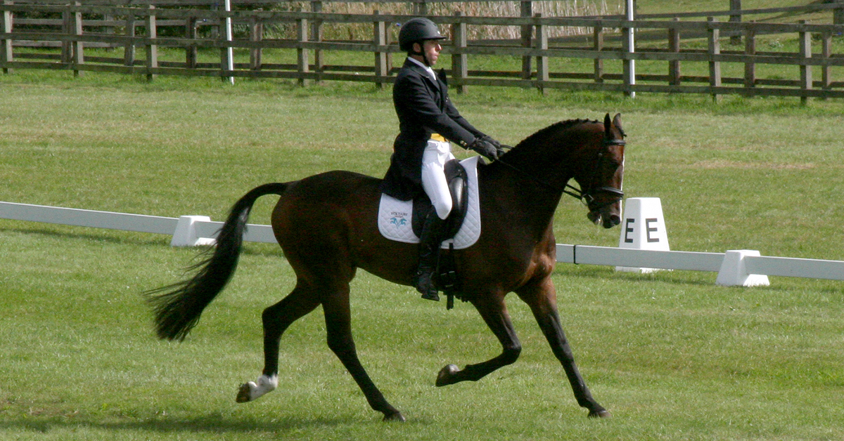 Thumbnail for Canada's Mike Winter and El Mundo Competing in UK