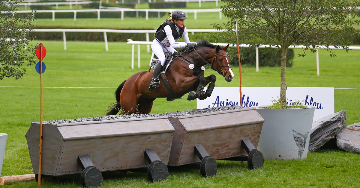 Thumbnail for Westphalian, Trakehner Top WBFSH Eventing Champs for Young Horses