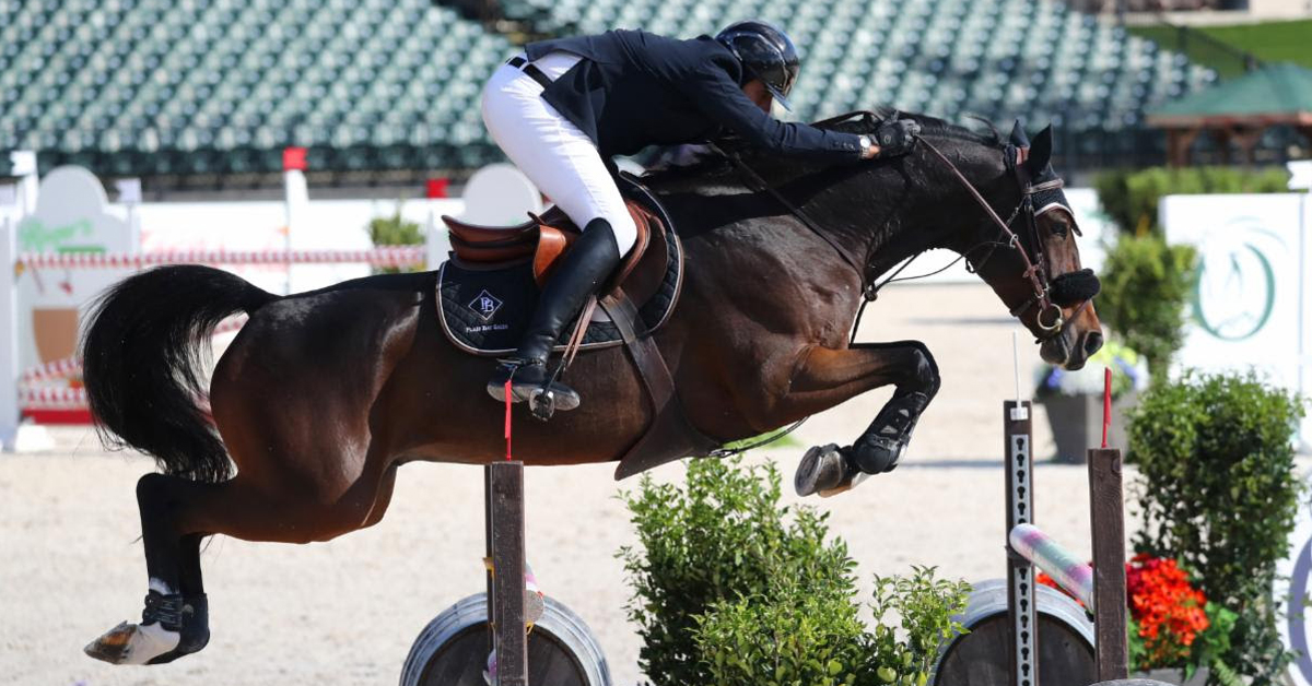 Thumbnail for Hat Trick for Prudent and Baloutinue With Tryon Resort Grand Prix Win