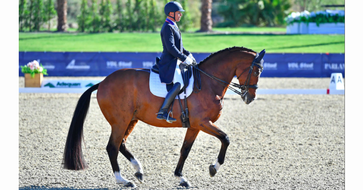Thumbnail for Steffen Peters and Suppenkasper Win FEI Grand Prix Special at DIHP