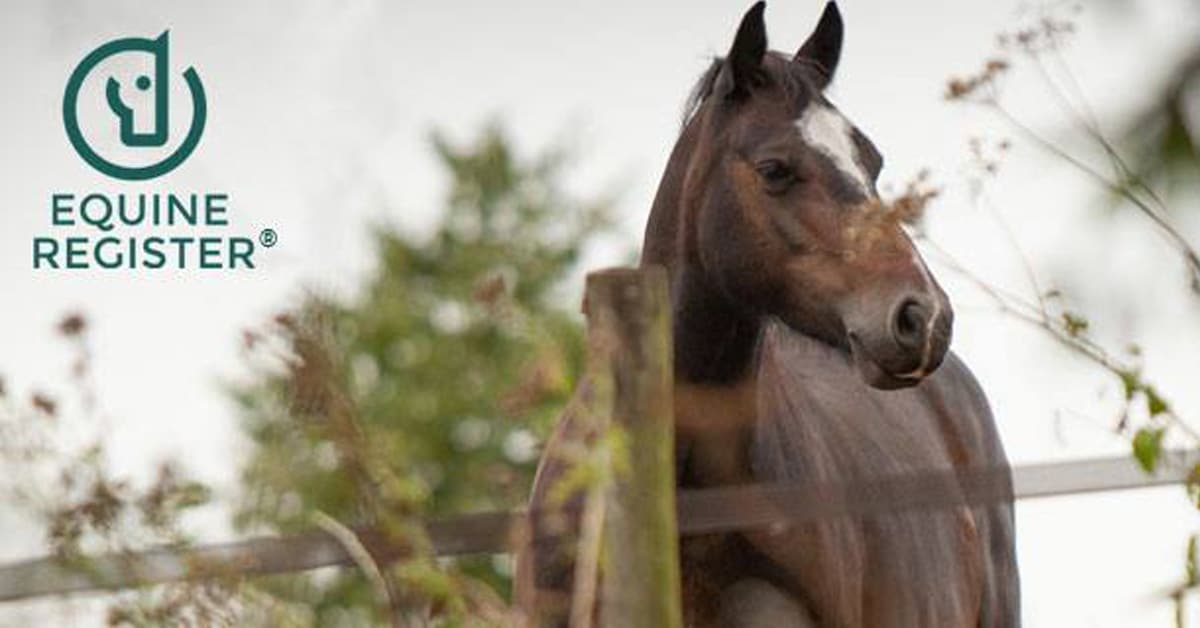 Thumbnail for EC Partners with UK Firm on National Equine Traceability & Identification Platform