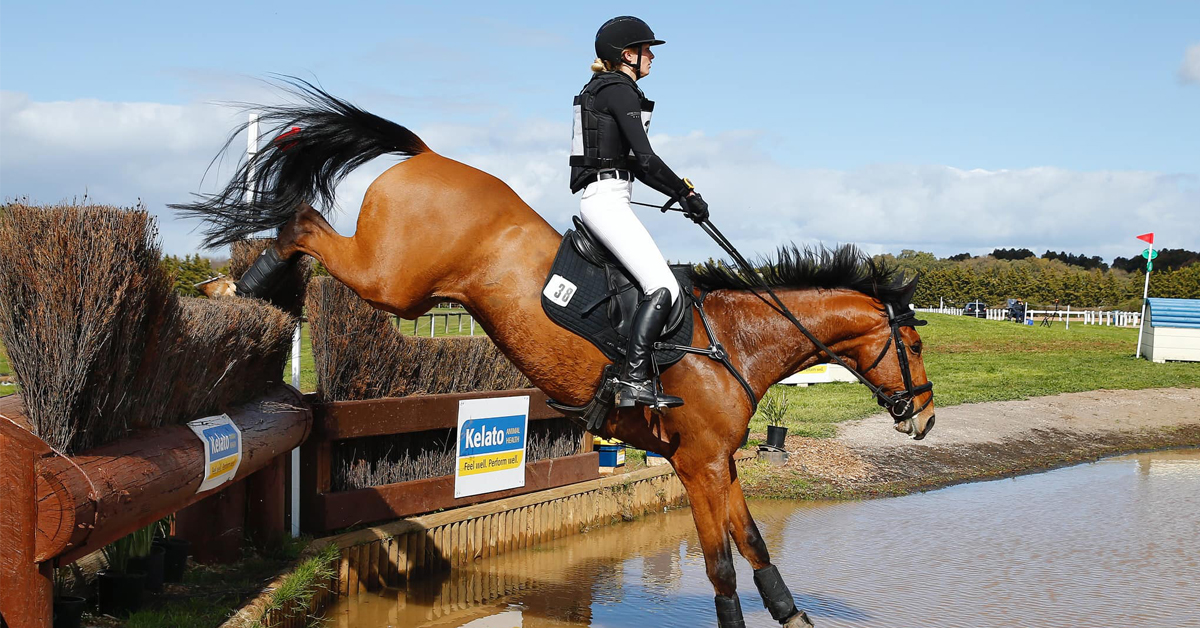 Thumbnail for Second Australian Rider Suspended Under FEI Safeguarding Protocols