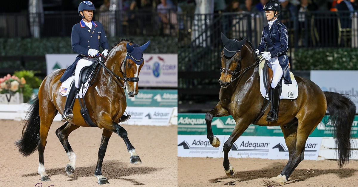 Thumbnail for Friday Night Stars Sparkle in CDI5* Competition at AGDF