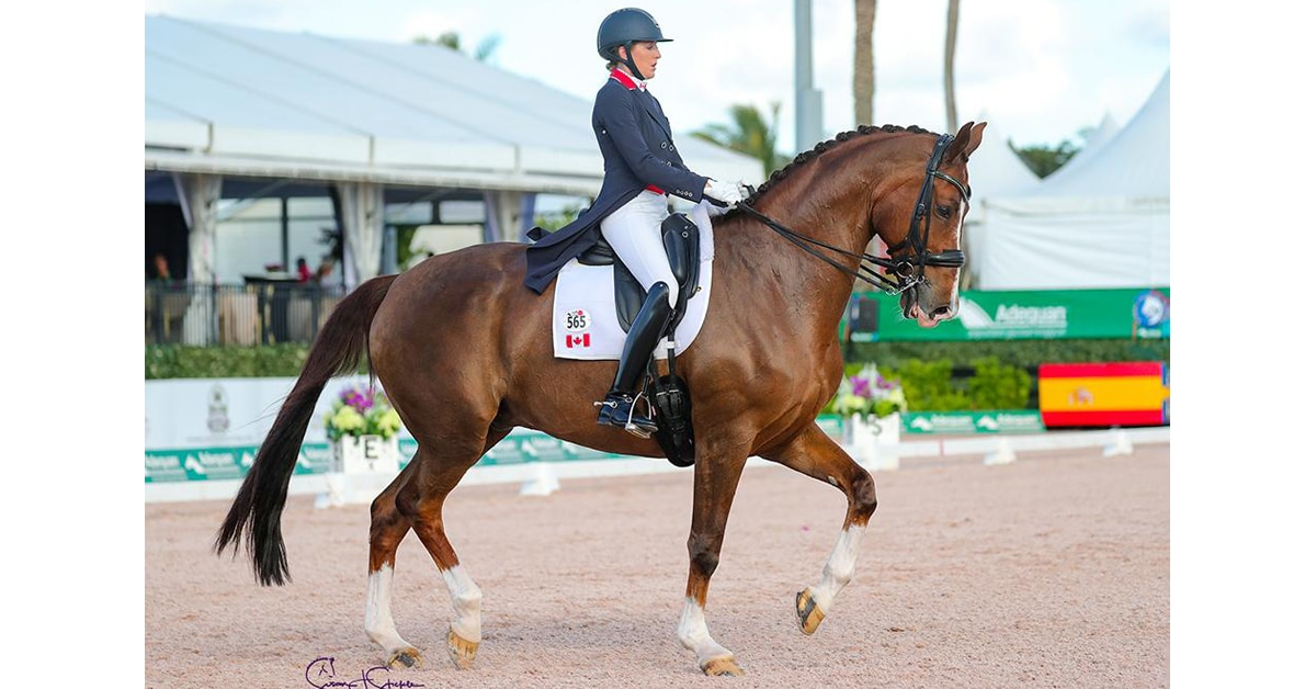 Thumbnail for Best-Ever GP Score for Fraser-Beaulieu and All In at AGDF5