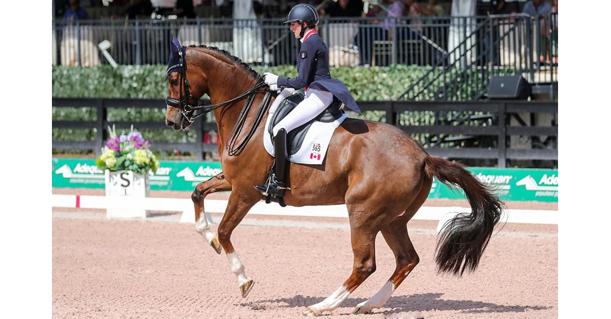 Thumbnail for Canadians Take Top Honours in Freestyle and Future Challenge at AGDF 5