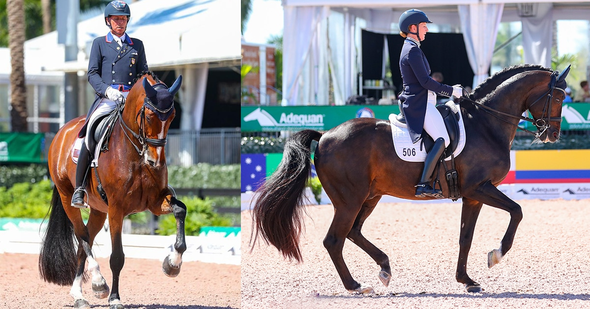 Thumbnail for Peters, Schut-Kery Shine in Grand Prix Classes at AGDF 7