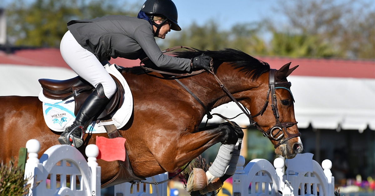 Thumbnail for Lisa Carlsen and Livestream 2 Win $137,000 1.55m CSI3* Grand Prix
