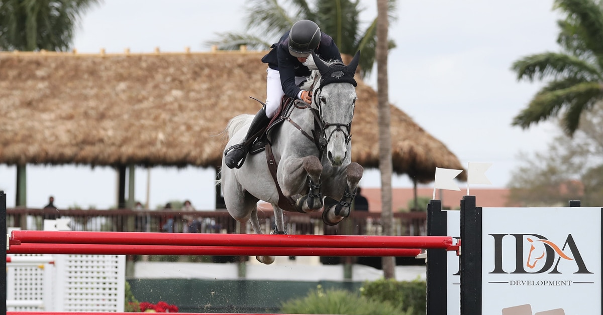 Thumbnail for Bertram Notches Another WEF 6 Win in $137,000 Grand Prix