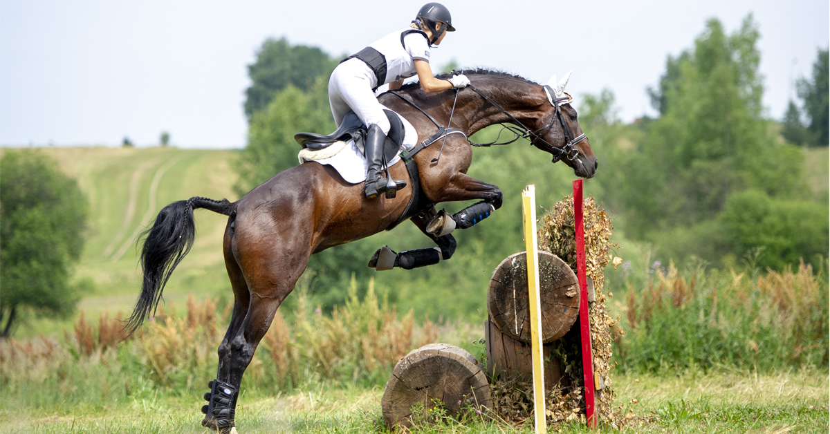 Thumbnail for Eventing Riders Must Face Up to Their Own Unreadiness to Upgrade