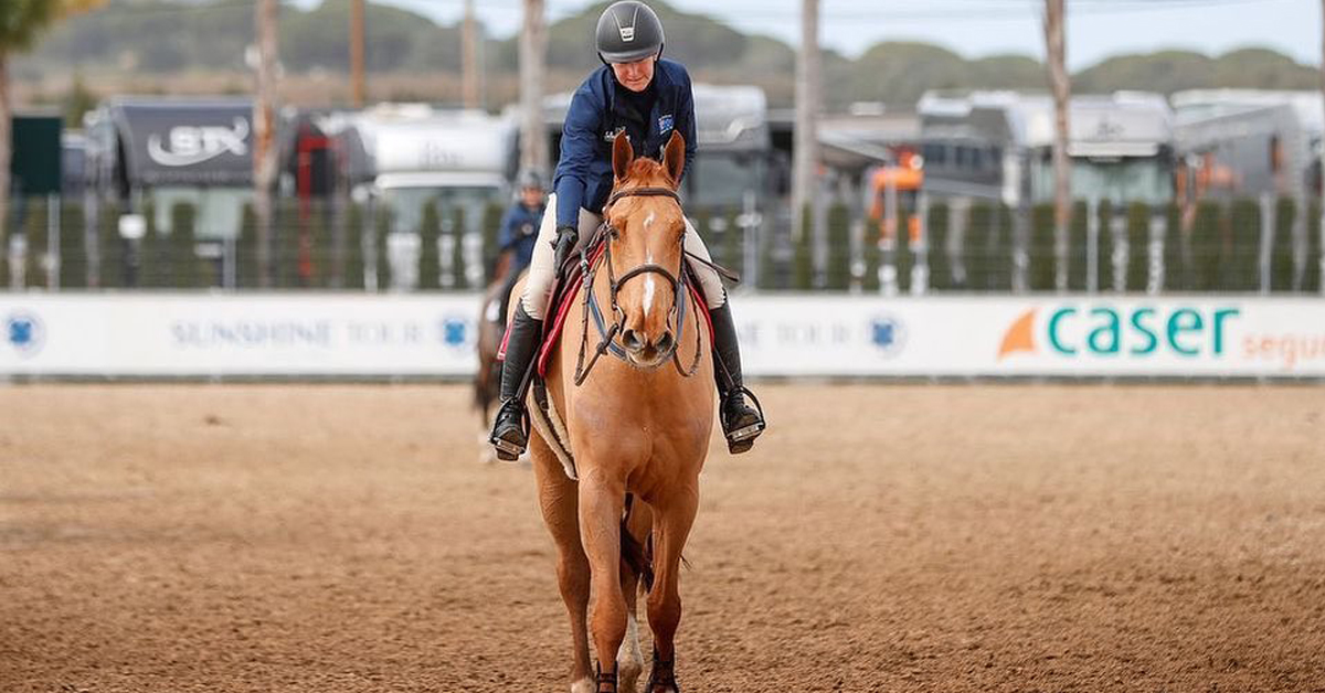 Thumbnail for Australian Rider Reports 6 of Her ex-Vejer Horses EHV-1 Positive