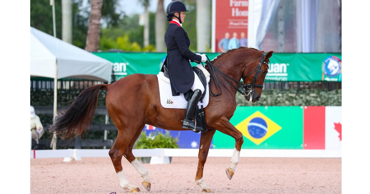 Thumbnail for Karen Pavicic and Totem Top FEI Intermediaire II CDI3* at AGDF 10