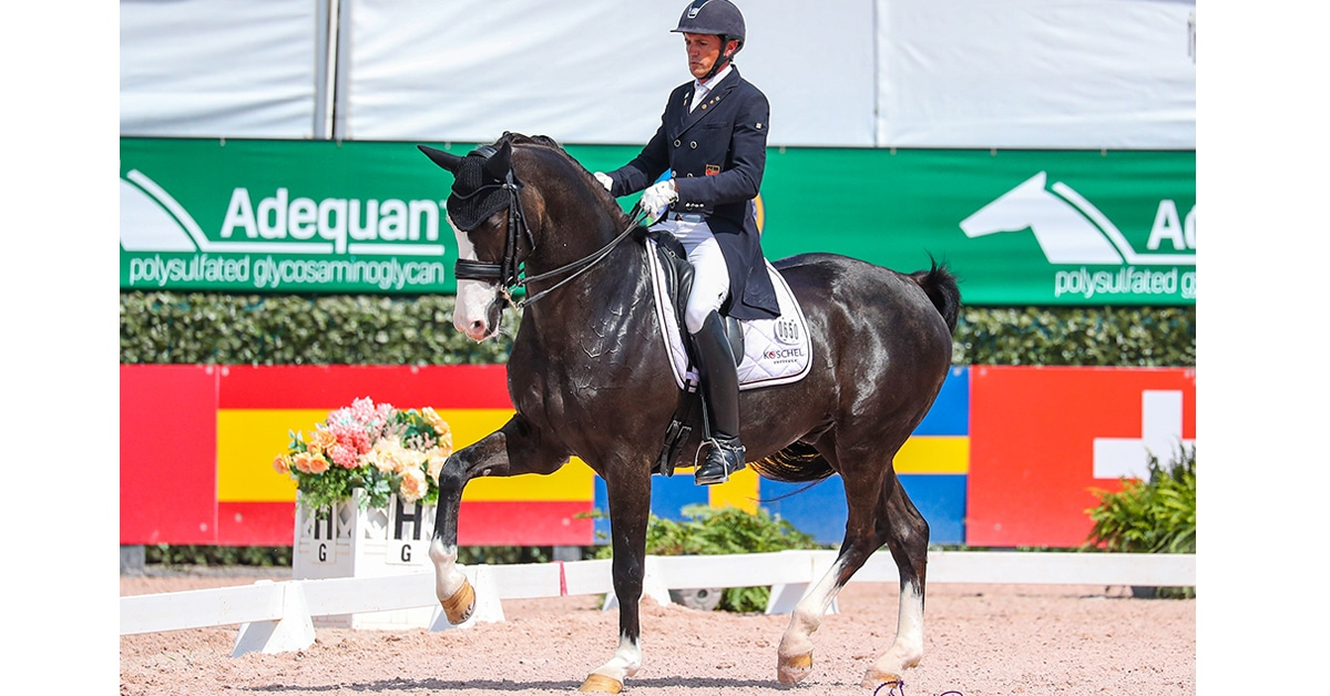 Thumbnail for Germany Wins, Canada Takes Bronze in Nations Cup Action at AGDF