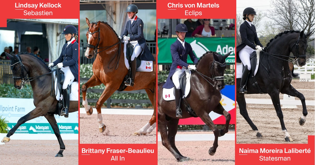 Thumbnail for Canadian Dressage Teams Announced For Wellington Nations Cups