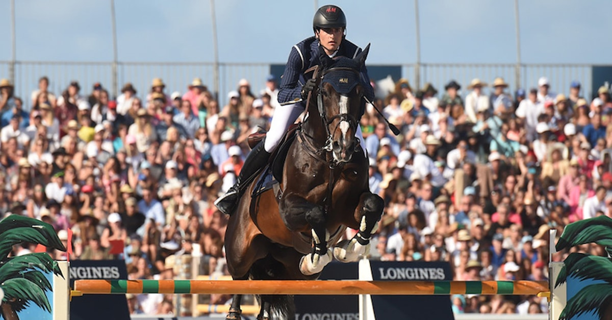 Thumbnail for Two Horses Euthanized at Winter Equestrian Festival