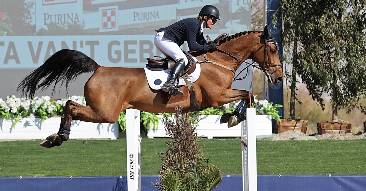 Thumbnail for Casady Wins $75,000 Grand Prix at Desert International Horse Park
