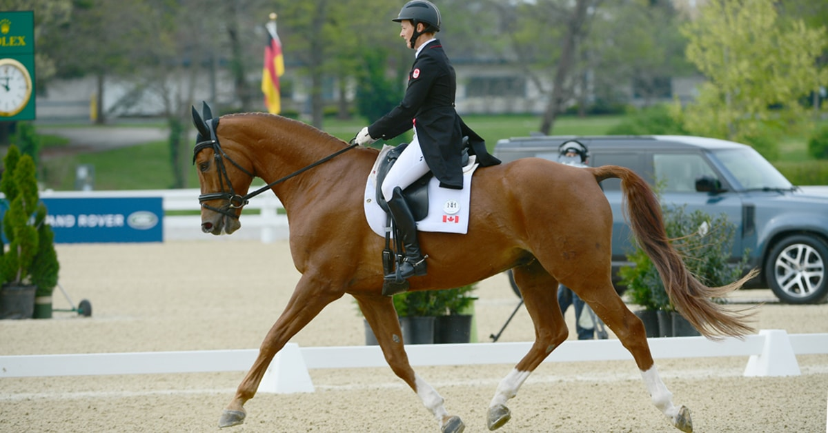 Thumbnail for Colleen Loach and Vermont 2nd After CCI4* Dressage in Kentucky