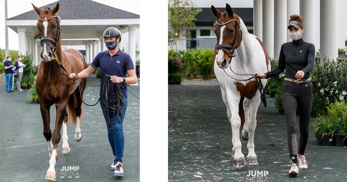 Thumbnail for International Dressage Competition Set To Begin at WEC-Ocala