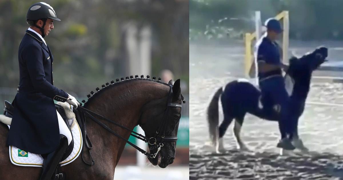 Thumbnail for Dressage Olympian Banned Three Years for Abusing Daughter's Pony