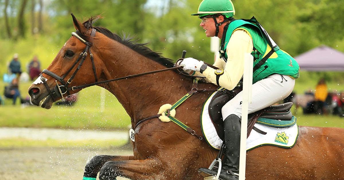 Thumbnail for Good Results for Canadian Eventers at Jersey Fresh