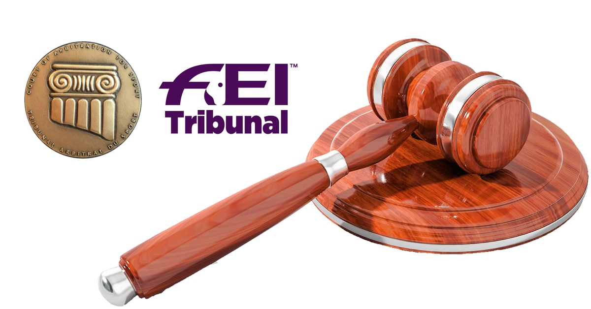 Thumbnail for FEI 20-year Horse Abuse Sanction Overruled by CAS