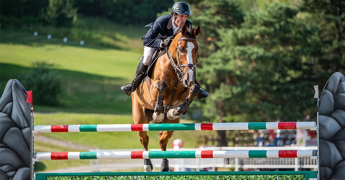 Thumbnail for Open Secret of Kocher Electric Spurs Emerges in Detailed FEI Decision